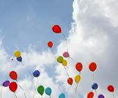 Many Colored Balloons Fly Up Towards The Sky poster