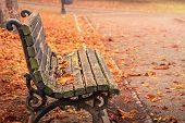 Autumn In The City Park. City Park Bench In Autumn. Public Park In Autumnal Colors. Fall In The Park poster