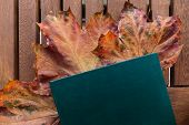 Cropped Photo Of Green Diary On Wooden Table. Under Diary Lying Orange Maple Leaves, Autumn Mood. Fr poster