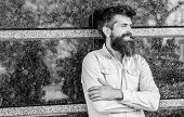 Beard Grooming. Man Attractive Bearded Hipster Posing Outdoors. Masculinity And Manliness. Confident poster
