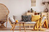 Stunning Wicker Peacock Chair Next To Modern Scandinavian Settee With Pillows poster