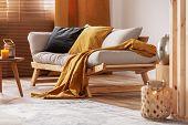 Closeup Of Comfortable Scandinavian Sofa With Futon And Black And Orange Pillows poster