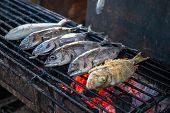Sea Fish On Grill. Grilled Seafood Dinner Cooking Photo. Healthy Fresh Food. Nutritional Diet Dish.  poster