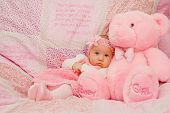 image of bible verses  - Baby girl on pink blanket with Bible verses - JPG