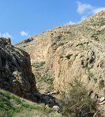image of jericho  - Desert mountain valley of Nachal Prat creek in spring - JPG