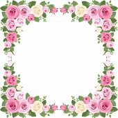 pic of english rose  - Vector illustration of vintage frame with pink and white roses - JPG