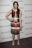 LOS ANGELES - FEB 19:  Louise Roe arrives at the BVLGARI Celebrates Elizabeth Taylor's Jewelry Colle