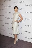 LOS ANGELES - FEB 19:  Clotilde Courau arrives at the BVLGARI Celebrates Elizabeth Taylor's Jewelry