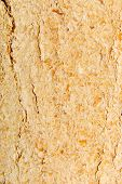 stock photo of briquette  - Wood sawdust briquettes texture  - JPG