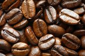 coffee beans, macro closeup