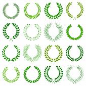 image of laurel  - vector collection of laurel wreaths on white background - JPG