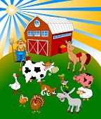stock photo of turkey-hen  - Farmer on his small farm with different animals - JPG