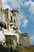 Ruined medieval castle with tower