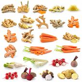 Turmeric, Ginger, Carrots, Radish, Beetroot, Potato, Taro Root Isolated On White Background