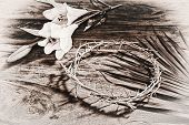 foto of easter lily  - A sepia toned black and white image depicting Christian religious icons relating to Easter  - JPG