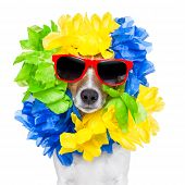 foto of loco  - crazy silly brazilian dog with red sunglasses and flower chain - JPG