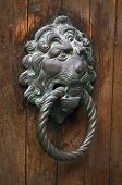 Gilded Lion Head Door Knob On The Wooden Door In Venice