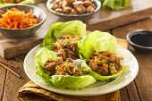 stock photo of poultry  - Healthy Asian Chicken Lettuce Wrap with Carrots