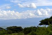 picture of kilimanjaro  - Snow on top of Mount Kilimanjaro in Amboseli - JPG