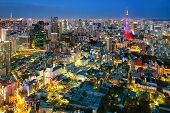 picture of kanto  - Tokyo city view visible on the horizon - JPG