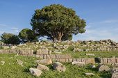 pic of altar  - the remains of the Altar of Zeus at Pergamum - JPG