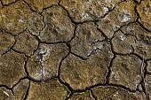 picture of arid  - Dry arid soil with cracks - JPG