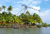 picture of alleppey  - Chinese traditional fishing net in Kerala - JPG