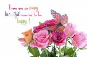 stock photo of monarch butterfly  - Pink fuchsia and yellow rose buds with monarch butterfly with inspirational quote against white background - JPG
