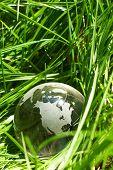 Постер, плакат: Глобус в траве экология