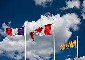 foto of acadian  - Acadian - JPG