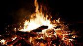 Burning Fire. Bonfire Close-up. Bonfire Burning Trees At Night. Bonfire Burning Brightly, Heat, Ligh poster