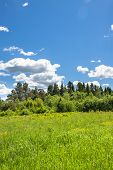 Beautiful Rural Summer Landscape With  Meadow And With Blue Sky, White Clouds. Spring Landscape With poster