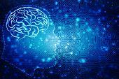 Human Brain 2d Illustration, Digital Illustration Of Human Brain Structure, Creative Brain Concept B poster