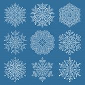 Set Of White Snowflakes. Fine Winter Ornament. Snowflakes Collection. Snowflakes For Backgrounds And poster
