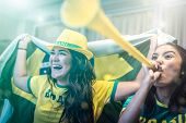 Brazilian fan celebrating during soccer match at home poster