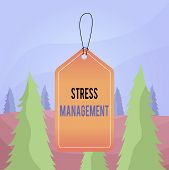 Word Writing Text Stress Management. Business Concept For Method Of Limiting Stress And Its Effects  poster