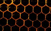 Honeycomb With Honey And Pollen. Sweet And Natural Honey Inside The Honeycomb. Background Of Honeyco poster