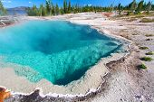 Black Pool Yellowstone National Park