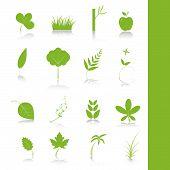 Постер, плакат: Зеленые растения значок символ набор