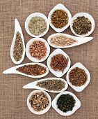 Medicinal herb selection also used in magical potions over hessian background.