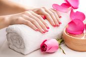 beautiful pink manicure with fragrant rose petals and towel. Spa