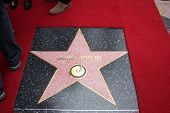 LOS ANGELES - NOV 4:  Janis Joplin WOF Star at the Janis Joplin Hollywood Walk of Fame Star Ceremony