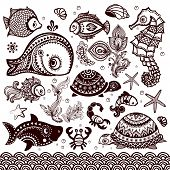 pic of shell-fishes  - Vector set of fish - JPG