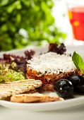 picture of tartar  - Salmon Tartare with Crispy Bread - JPG