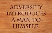 picture of perseverance  - Adversity introduces a man to himself  - JPG
