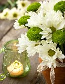 White And Green Chrysanthemums