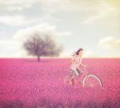 stock photo of riding-crop  - a beautiful tree in a red field with a woman riding through done with a warm instagram like filter - JPG