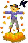 foto of scarecrow  - Vector illustration of Scarecrow cartoon isolated on white background - JPG