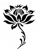 stock photo of white flower  - illustration drawing of beautiful black lotus flower pattern - JPG