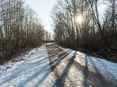 picture of icy road  - icy winter road with sun rays and trees - JPG